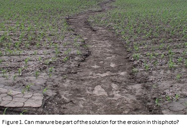 Manure Impact On Erosion And Runoff Unl Water