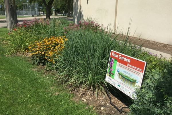 Photo of a Raingarden in Columbus
