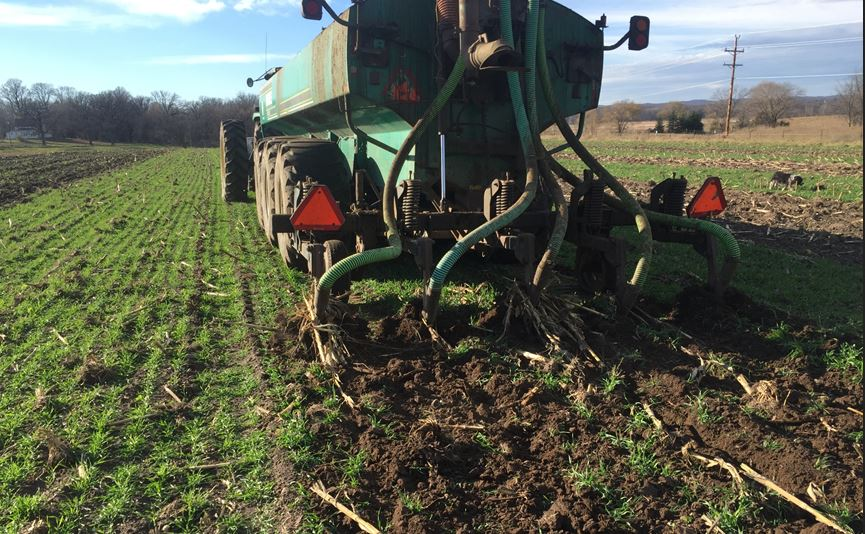 Fall manure injection into cereal rye cover crop