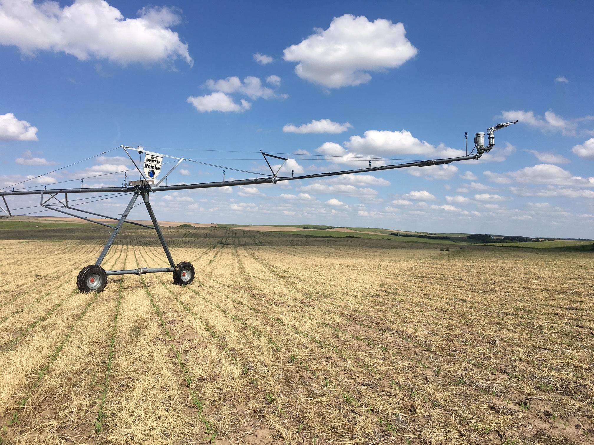 Center Pivot in soybean field Greeley County, NE