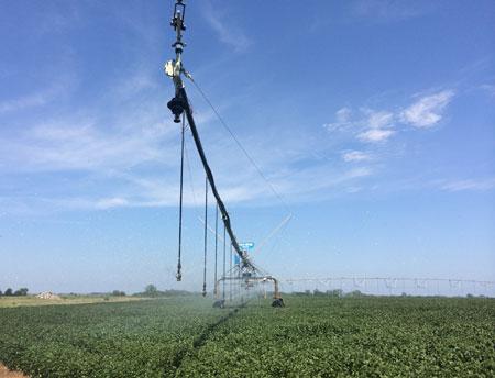 Nebraska Irrigation Center Pivot
