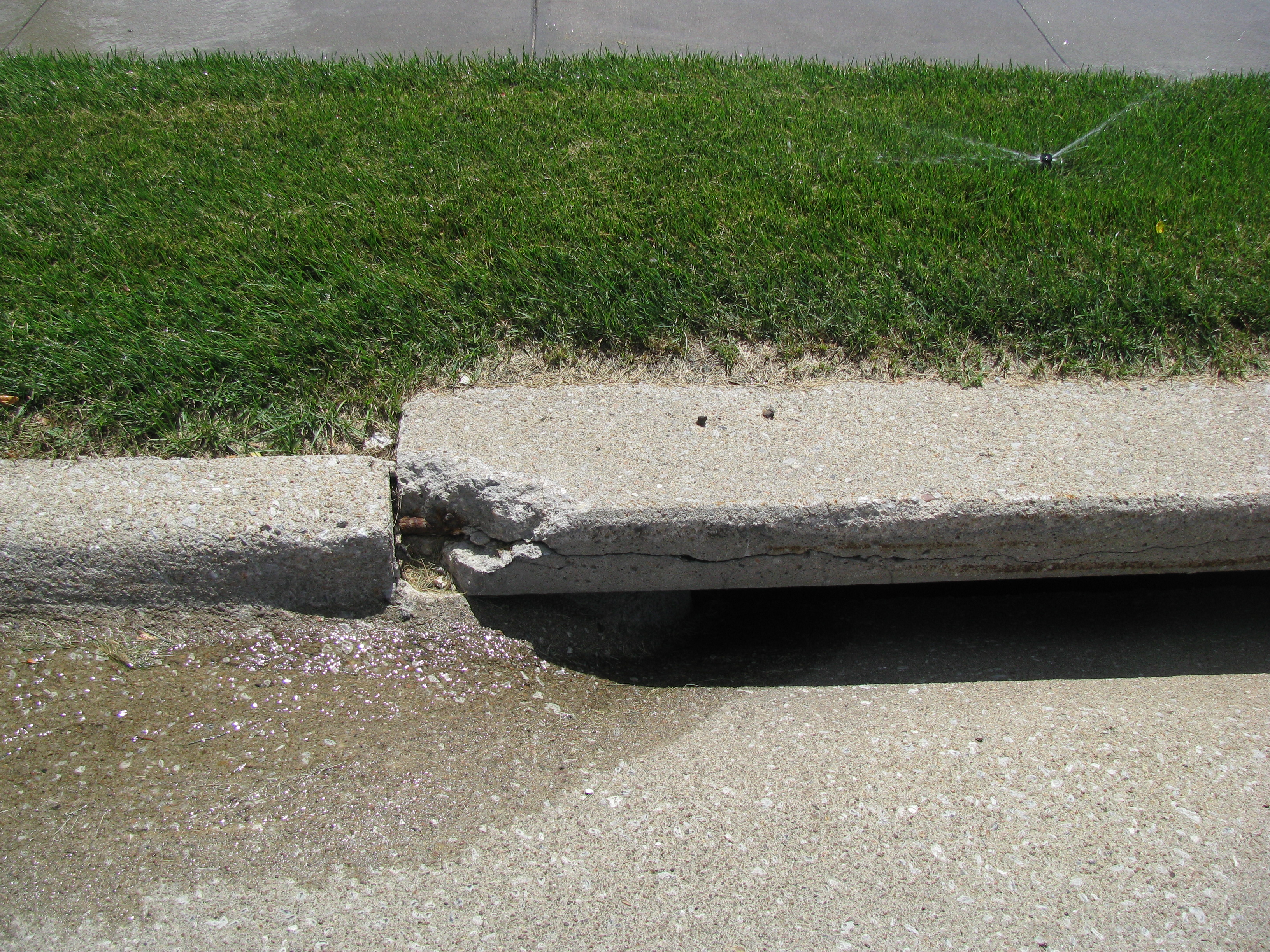 Rain water and irrigation go to the storm drain