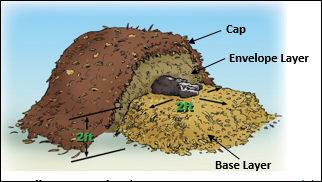 compost pile construction schematic