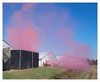 Pink dust cloud