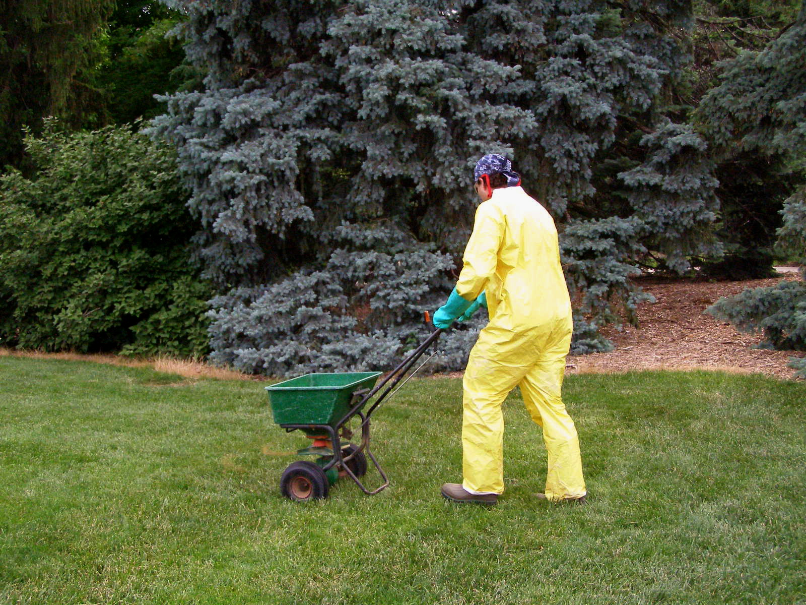 Lawncare professional spreading fertilizer in the correct PPE