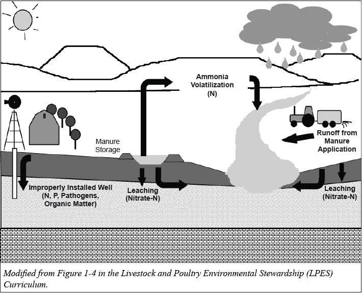 Common pathways for manure contaminants to reach surface water and groundwater