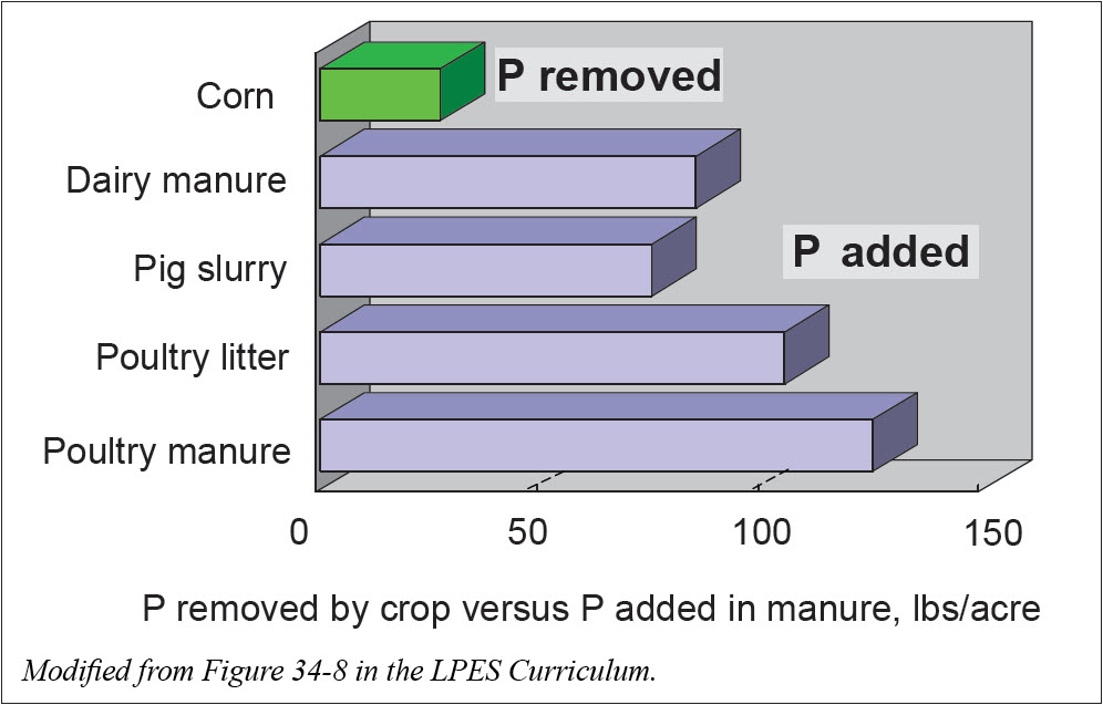 phosphorus additions vs removal