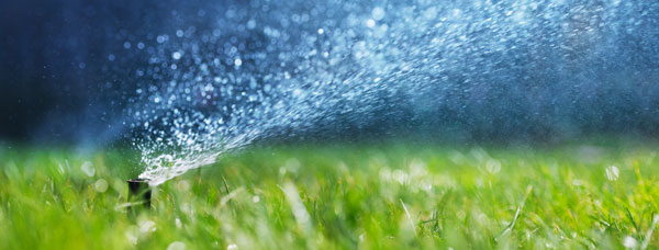 Close up of a sprinkler