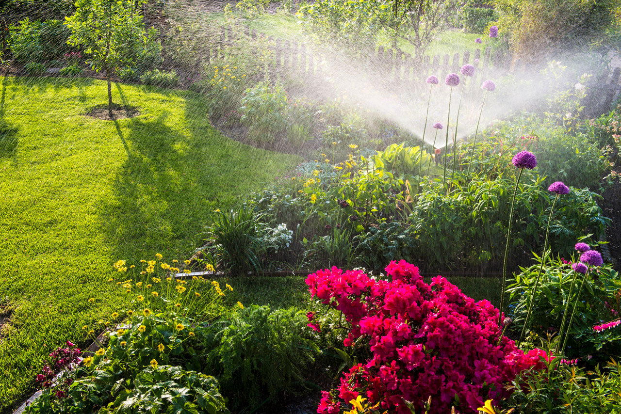 Yard with a sprinkler going