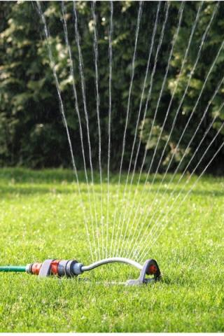 Photo of a Sprinkler in a lawn
